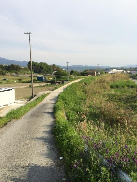 鈴木さんの工房への道